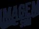 ids-logo-1-04